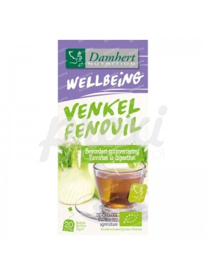 20  INFUSION FENOUIL